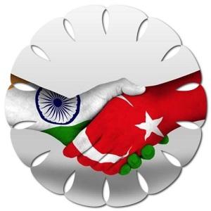 Hindistan'a vize nereden alınır, Hindistan Türk vatandaşlarına vize veriyormu